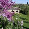 446_castello_di_bi_27.jpg